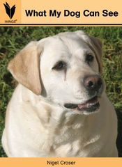 Wings - Level 2 Nonfiction - What My Dog Can See 9781741208405