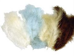 Feathers Natural Coloured Approx 50 Feathers 9314812119883