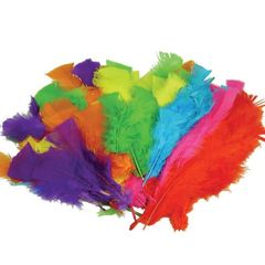 Feathers Pk 50 Small Asst Cols (Pack of 50, Assorted Colours, Small) 9314812102670