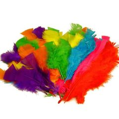 Feathers 30g Large Asst Cols 9314812106227