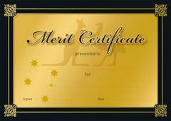 Certificates Card - Gold  - Pk 20 MC389C